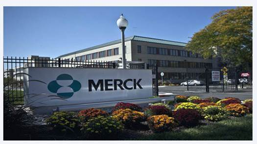 Merck and Co pharma company