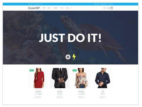 OceanWP Theme speed