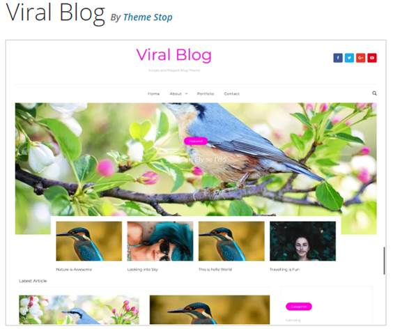 Viral Blog wordpress theme