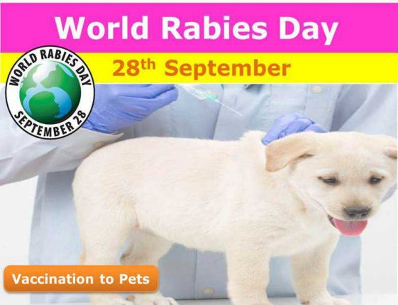 World-Rabies-Day-September